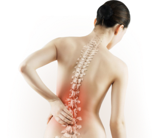 imagen_osteoporosis